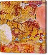 Wall Abstract 3 Canvas Print