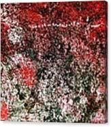 Wall Abstract 38 Canvas Print