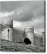 Wall Against Clouds Canvas Print
