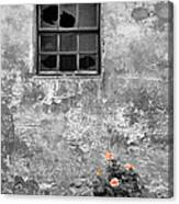 Window And Flowers Canvas Print