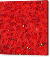 Wall Of Red Roses Canvas Print