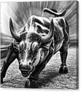 Wall Street Bull Black And White Canvas Print
