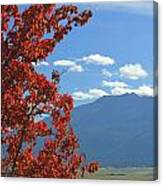 Dn5930-wallowa Valley In Fall Canvas Print