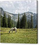 Wallowas - No. 2 Canvas Print