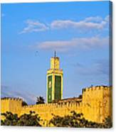 Walls Of Meknes In Morocco Canvas Print