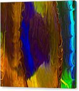 Wandering Eye Canvas Print