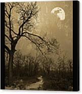 Waning Winter Moon Canvas Print