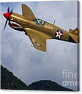 Warhawk Curtiss P-40  Canvas Print