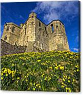 Warkworth Castle In Spring Canvas Print