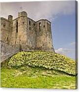Warkworth Castle With  Daffodils Canvas Print