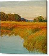 Warm Sunset On The Bog Canvas Print