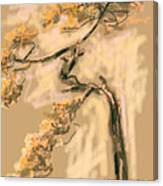 Warm Tree Canvas Print