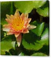 Warm Yellows Oranges And Corals - A Waterlily Impression Canvas Print