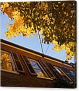 Washington D C Facades - Reflecting On Autumn In Georgetown  Canvas Print
