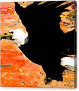 Washington Eagle Canvas Print