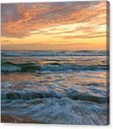 Washington Oaks At Low Tide Canvas Print