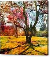 Washington Park I Canvas Print