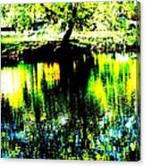Washington Park Canvas Print