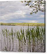 Watchaug Pond Canvas Print