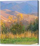Watching The Field  Canvas Print