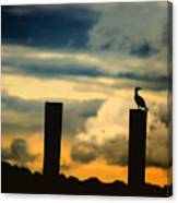 Watching The Sunrise Canvas Print