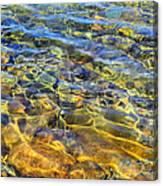 Water Abstract Canvas Print
