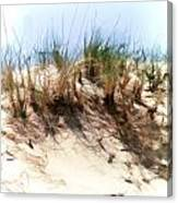 Water Color Sketch  Beach Dune Canvas Print