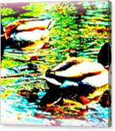 So Water Dance Is For Dancing Ducks  Canvas Print