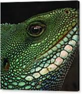 Water Dragon Face Vietnam Canvas Print