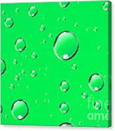 Water Drops On Green Canvas Print