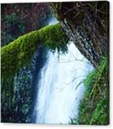 Water Fall Winter Canvas Print