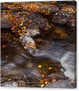 Water Flow Through The Boulders. Eureka. Mauritius Canvas Print