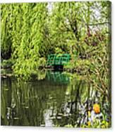 Water Garden Wonder Canvas Print