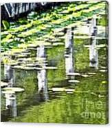 Water Green Canvas Print