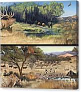 Water Hole Safari Canvas Print