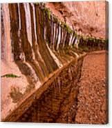 Water Is Life - Coyote Gulch - Utah Canvas Print