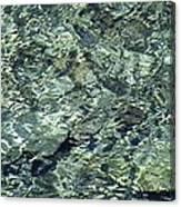 Water Jewel Canvas Print