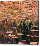 Water Lilies Re Do Canvas Print