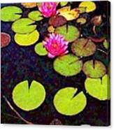 Water Lilies With Pink Flowers - Vertical Canvas Print