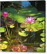 Water Lilly Garden Canvas Print