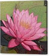 Water Lily And Guest Canvas Print