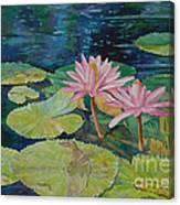 Water Lily In The Morning Canvas Print
