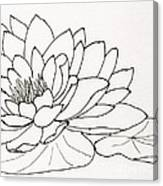 Water Lily Line Drawing Canvas Print