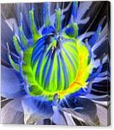 Water Lily - The Awakening - Photopower 03 Canvas Print