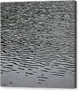 Water Lines Canvas Print