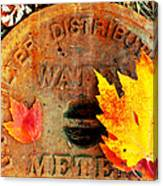 Water Meter Cover With Autumn Leaves Abstract Canvas Print