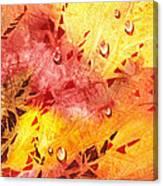 Water On Color Design Nine Canvas Print