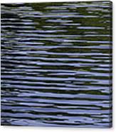 Water Pattern Canvas Print