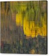 Water Reflections Abstract Autumn 2 B Canvas Print