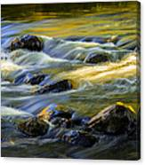 Beautiful Water Reflections On The Flowing Thornapple River Canvas Print